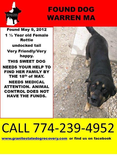 Flyer found rottie girl warren MA 5-17-12